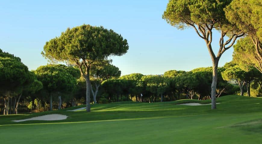 Millenium-Golf-Course